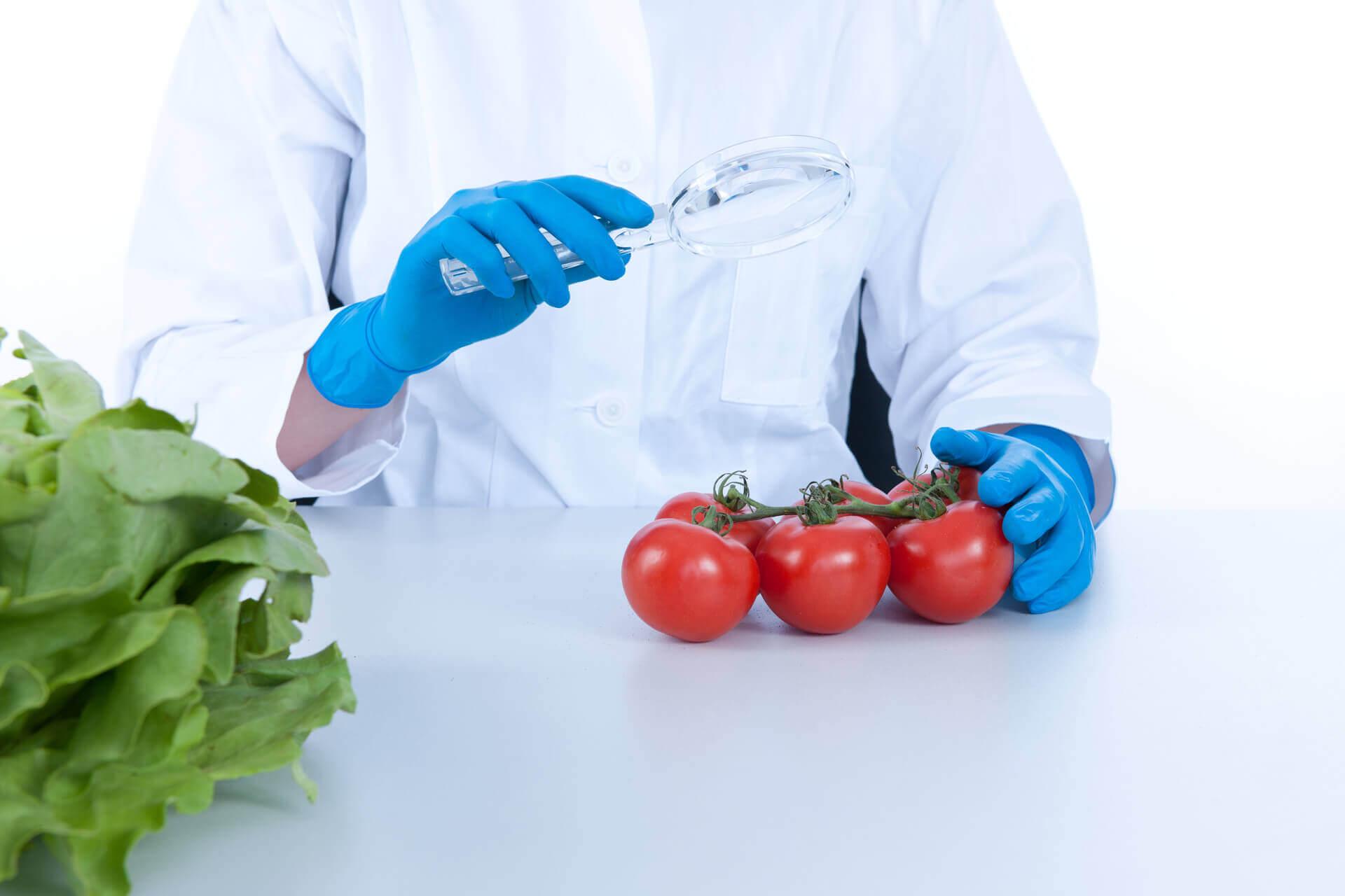 Schulung Lebensmittelhygiene